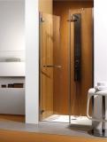 Душевые двери RADAWAY CARENA DWJ 120 34332-01-01NL